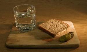 Vodka len tak s chlebíkom (pixabay.com)