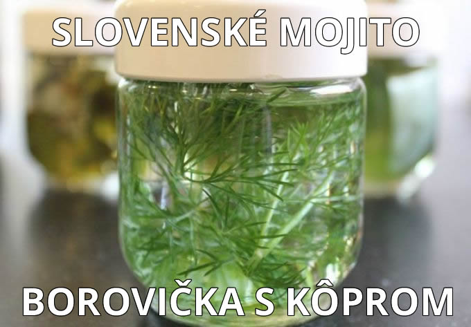 Slovenské mojito