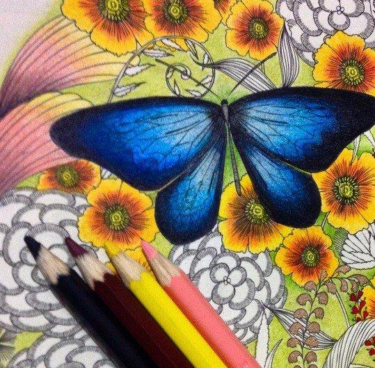 Hobby, ktorému prepadol celý svet: Niektoré kresby sa menia na umelecké diela