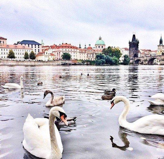 Cestovateľský FOTOtip: Je stará, pritom stále krásna a máme ju na skok, Praha!
