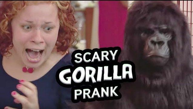 Hrôzostrašná gorila v skrytej kamere