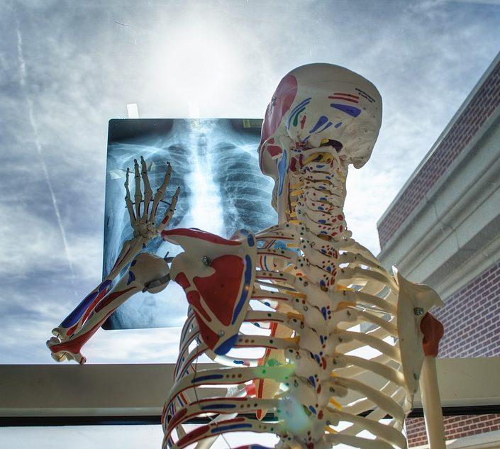 KVÍZ Ľudské telo je pre väčšinu z nás záhada: Ako dobre sa v ňom vyznáte?
