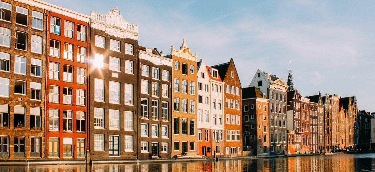štúdium v holandsku