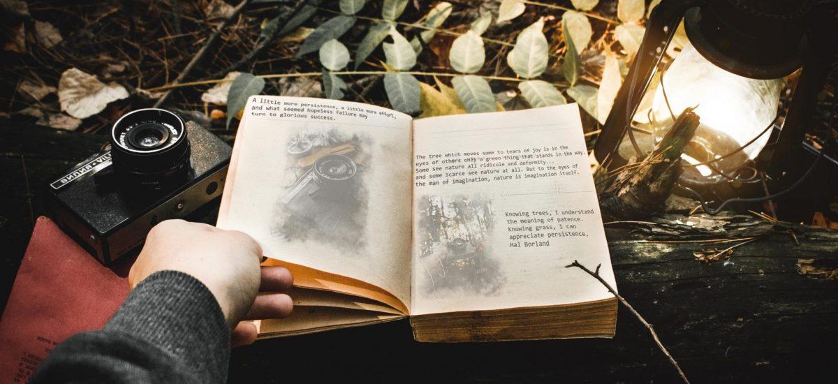 Kniha otvorená v lese, desivá atmosféra
