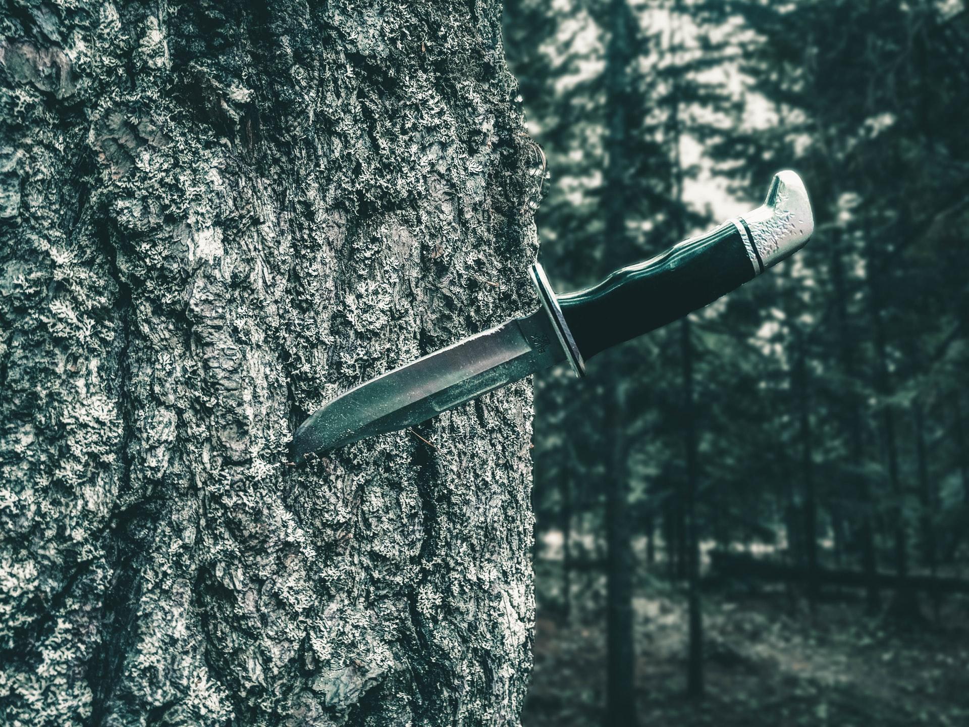 Nôž v kmeni stromu