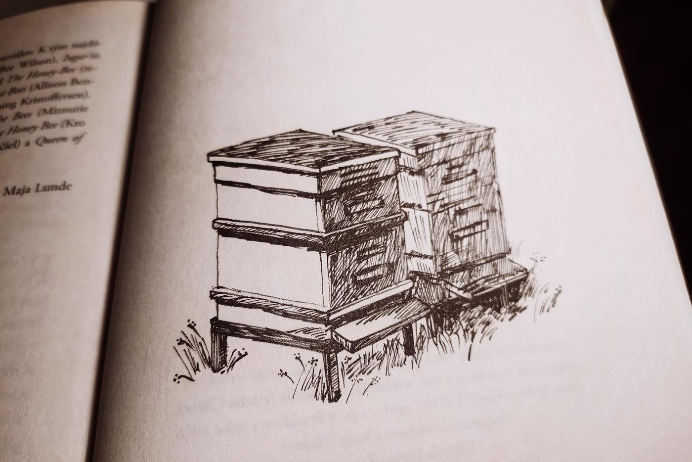 Kniha Príbeh včiel