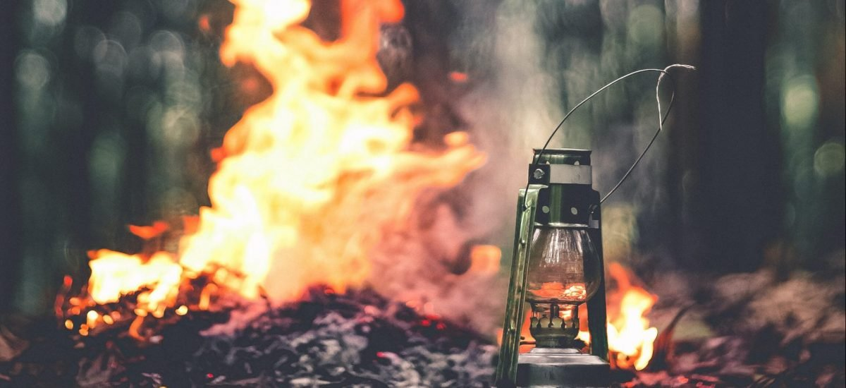 rozložený oheň v lese