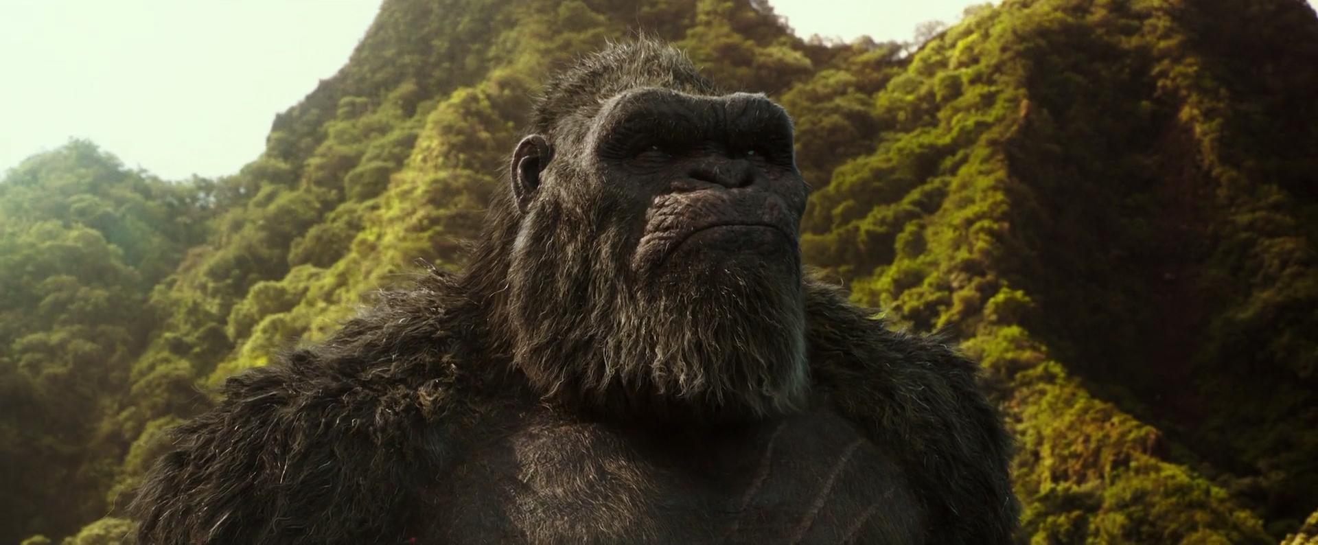 Kong ako jeden z adeptov na víťazstvo v súboji