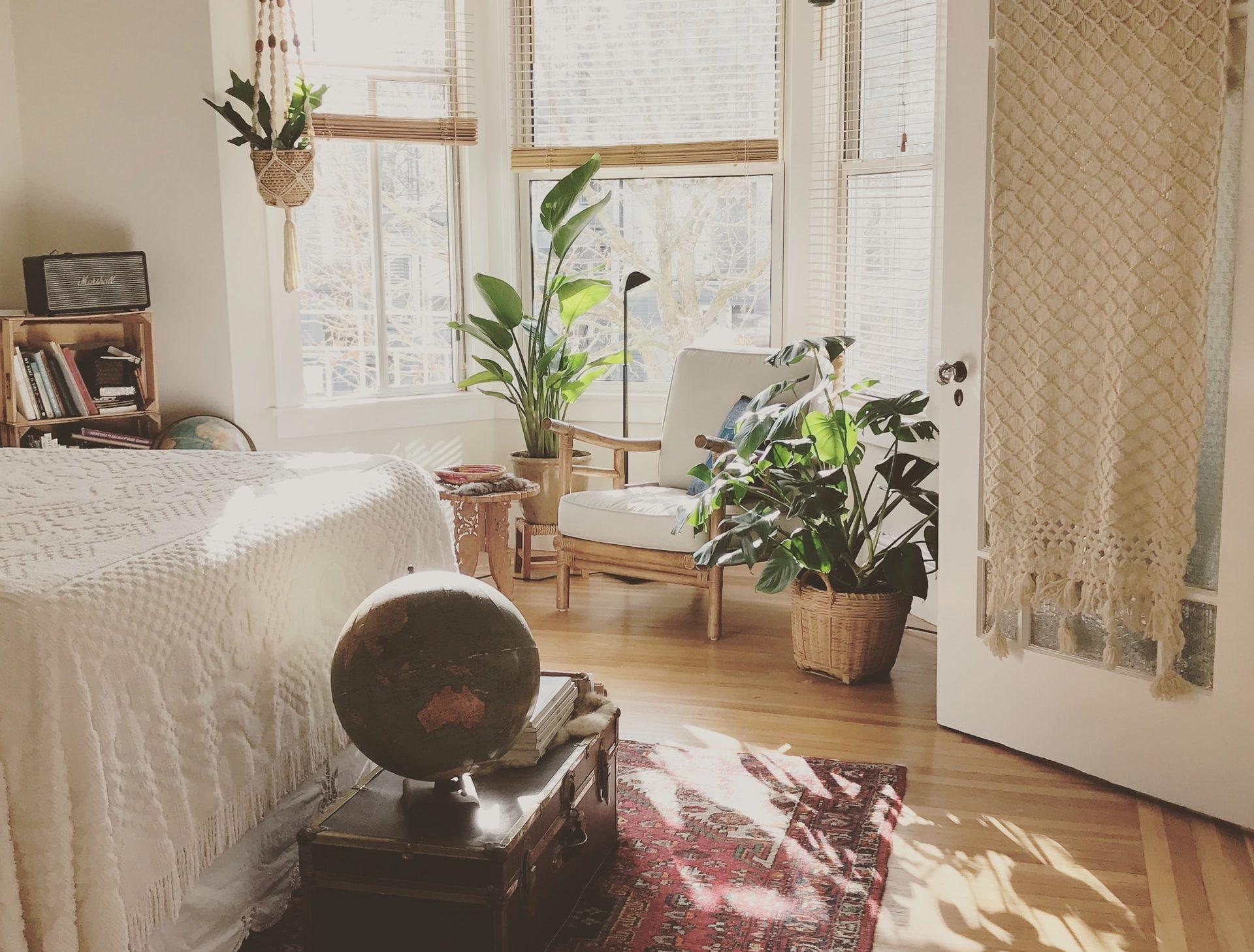 izba s rastlinami